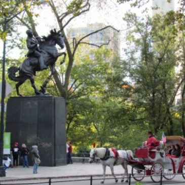 The Horses of Central Park